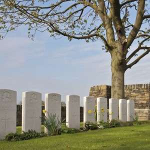 Gravestones of nine members of the Royal Newfoundland Regiment, Marcoing Cemetery