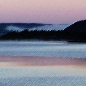 Morning Mist Labrador